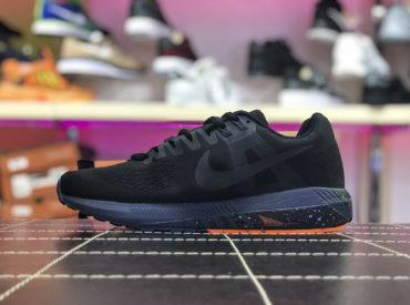 Nike Air Zoom Pegasus 21_1